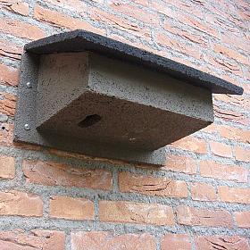 Nestkast-Gierzwaluw-WoodStone-schuin-90617-1